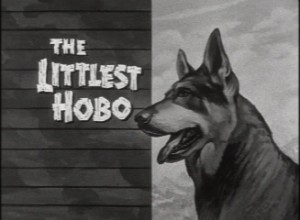 littlest_hobo
